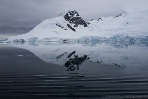 Antarctic reflection